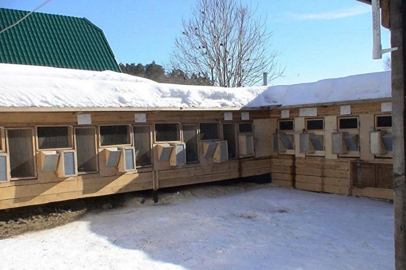Ферма кроликов Зимой