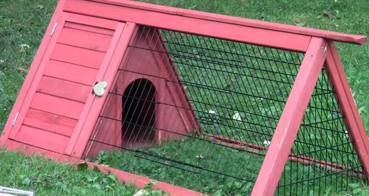 Домик для одного кролика