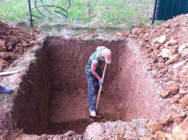 При постройке на песчаной почве велика вероятность ее осыпания, что может привести к гибели нескольких особей