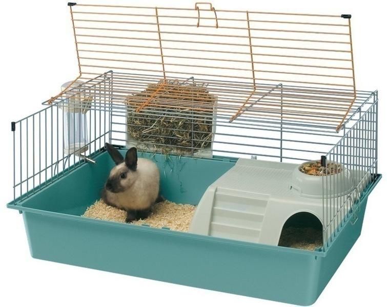 Домашний кролик клетка