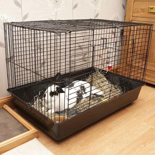 Декоративные кролики в клетки