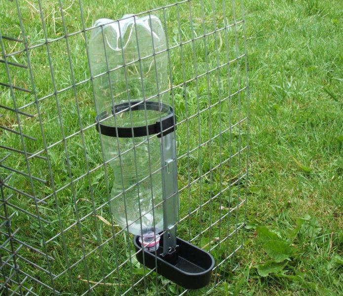 Поилка для кроликов в летней клетке