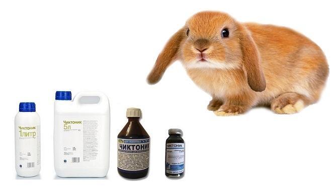 Витамины для кормящих крольчих