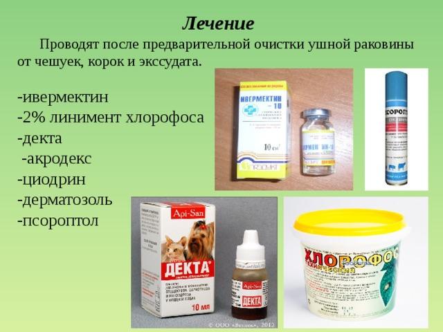 https://fsd.multiurok.ru/html/2017/10/31/s_59f8b14b9c98c/img33.jpg