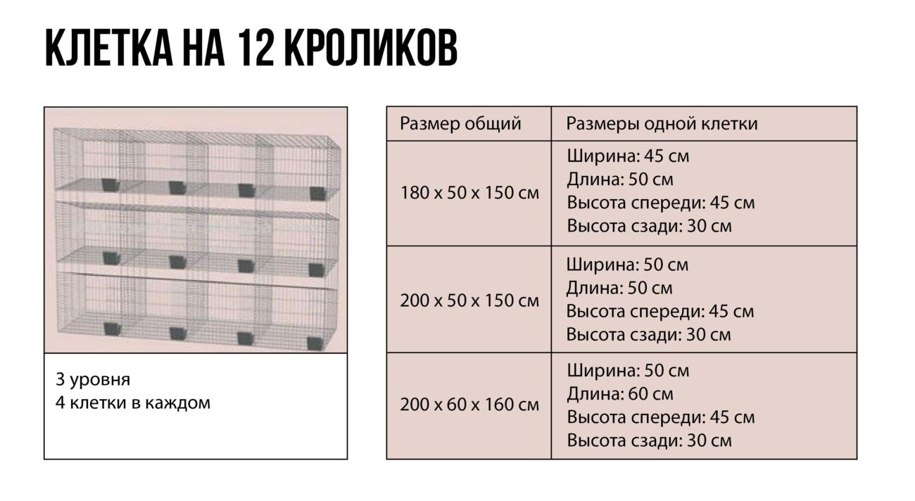 чертеж одной клетки в отдельности