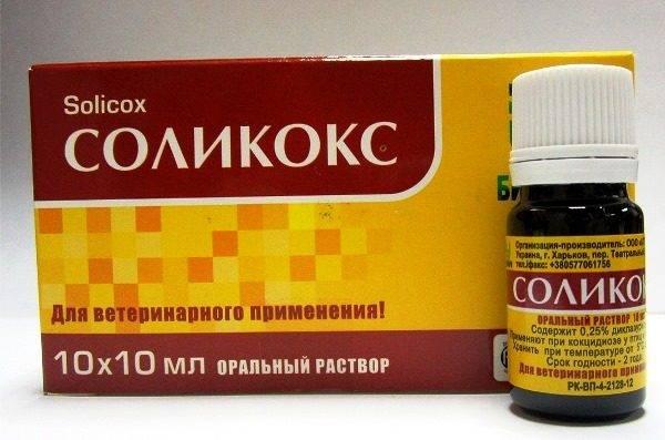 Как использовать препарат Соликокс для кроликов