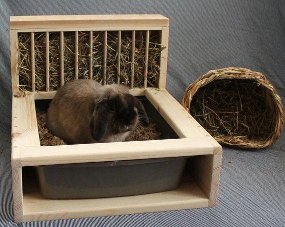 туалет для декоративного кролика