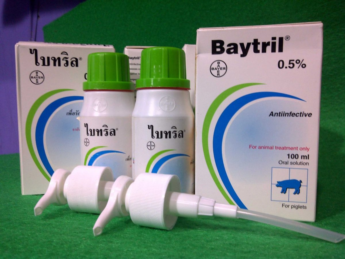 Лечение кроликов Байтрилом
