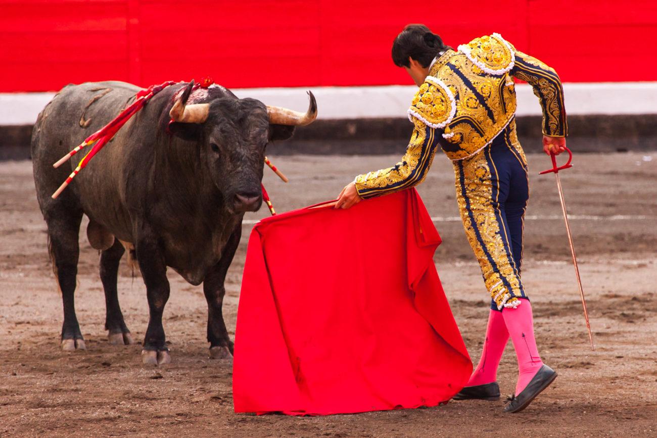 Красный цвет и бык