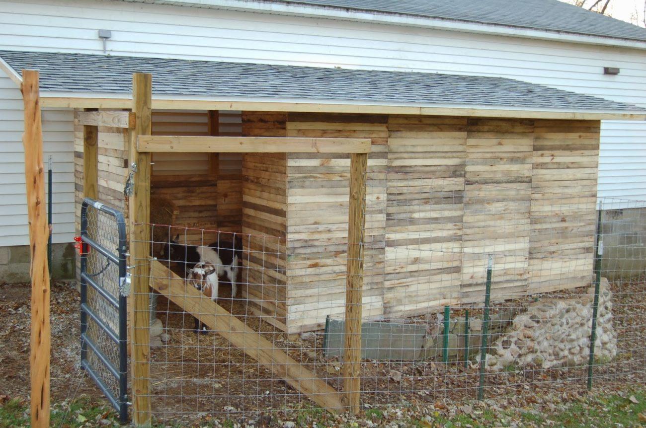 Сарай для коз постройка