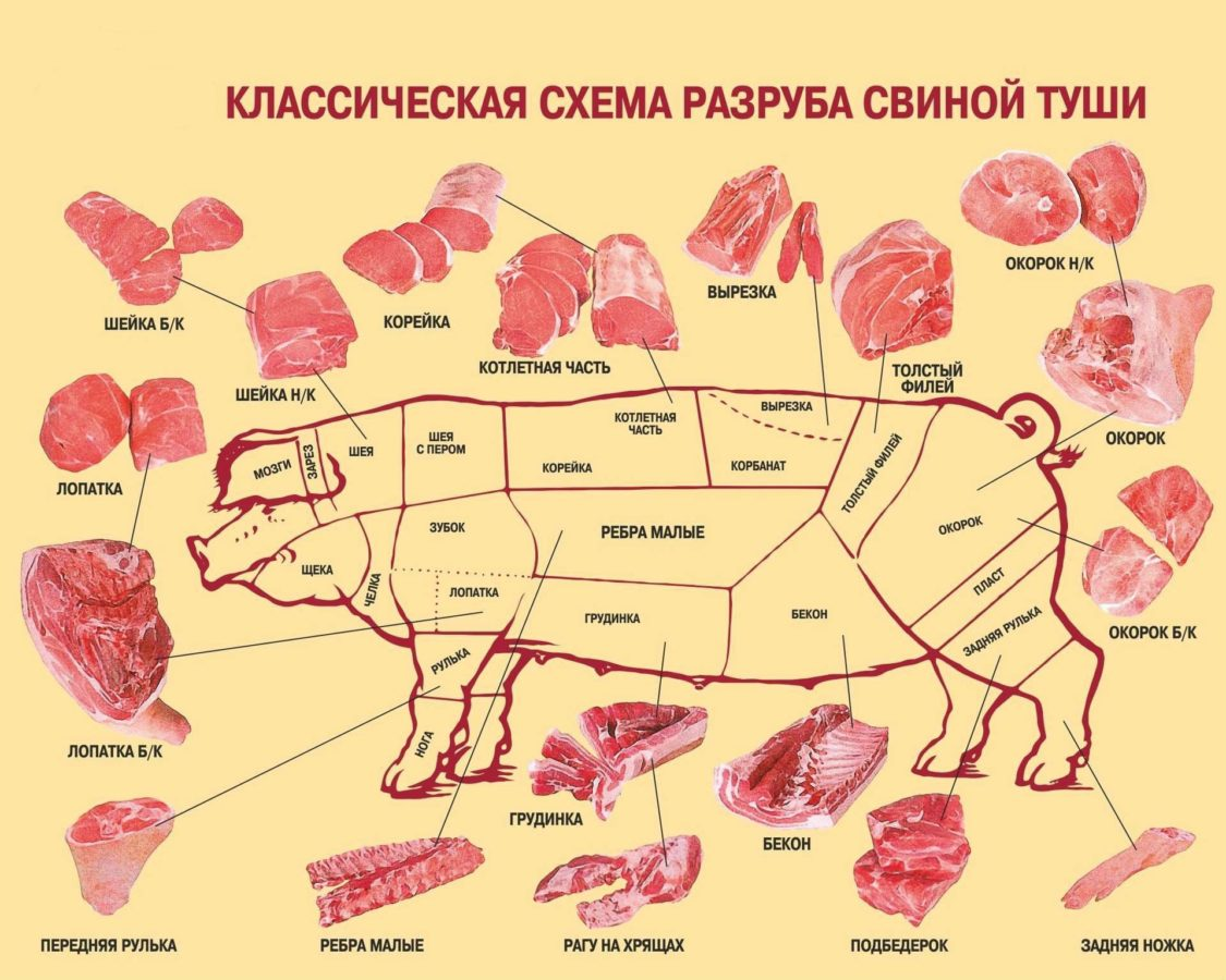 Как правильно зарезать свинью: инструкция по забою